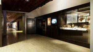 Proyecto: Museo Arqueológico de Madrid